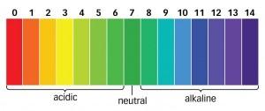 Độ PH phù hợp cho rượu trắng và cách kiểm soát độ PH